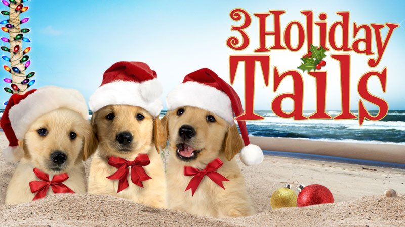 Image result for 3 holiday tails