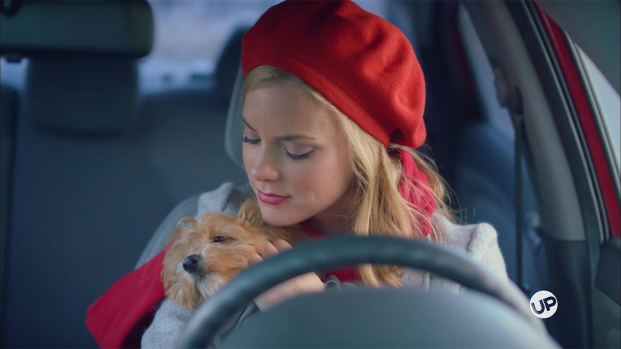 A Puppy for Christmas - A Puppy For Christmas – Doggone It