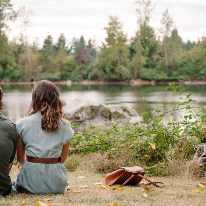 Love Stories in Sunflower Valley movie